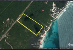 Foto de terreno habitacional en venta en  , solidaridad, solidaridad, quintana roo, 11557640 No. 01