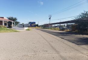Foto de terreno comercial en renta en solidaridad , las granjas, hermosillo, sonora, 10651007 No. 01