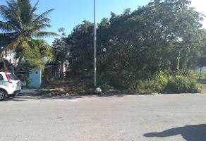 Foto de terreno habitacional en venta en  , solidaridad, solidaridad, quintana roo, 11229048 No. 01