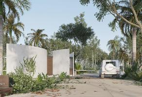 Foto de terreno habitacional en venta en  , solidaridad, solidaridad, quintana roo, 11299358 No. 10