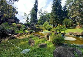 Foto de terreno habitacional en venta en  , sumiya, jiutepec, morelos, 21171149 No. 01