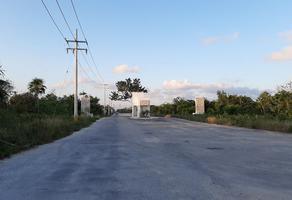Foto de terreno habitacional en venta en  , supermanzana 105, benito juárez, quintana roo, 17202124 No. 01