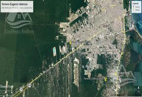 Foto de terreno habitacional en venta en  , supermanzana 106, benito juárez, quintana roo, 0 No. 01