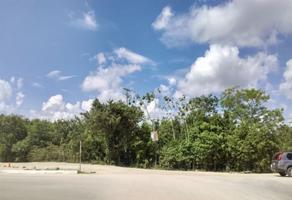 Foto de terreno habitacional en venta en  , supermanzana 299, benito juárez, quintana roo, 0 No. 01