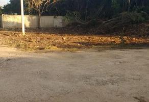 Foto de terreno habitacional en renta en  , supermanzana 312, benito juárez, quintana roo, 13034005 No. 01