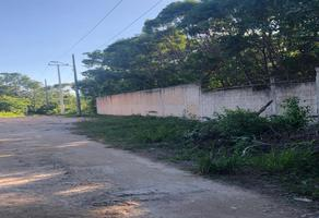 Foto de terreno habitacional en venta en  , supermanzana 312, benito juárez, quintana roo, 0 No. 01