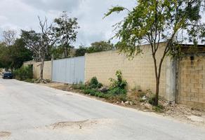 Foto de terreno comercial en renta en  , supermanzana 312, benito juárez, quintana roo, 0 No. 01