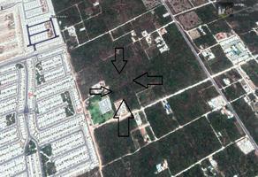 Foto de terreno habitacional en venta en supermanzana 313 avenida prolongación la luna 0 , cancún centro, benito juárez, quintana roo, 0 No. 01