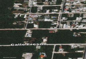Foto de terreno habitacional en venta en  , supermanzana 316, benito juárez, quintana roo, 19382943 No. 01