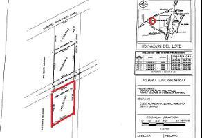 Foto de terreno habitacional en venta en  , supermanzana 9, benito juárez, quintana roo, 11506660 No. 01