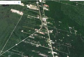 Foto de terreno habitacional en venta en  , supermanzana 9, benito juárez, quintana roo, 6840447 No. 01