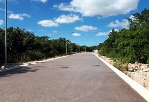 Foto de terreno habitacional en venta en  , supermanzana 52, benito juárez, quintana roo, 14542744 No. 01