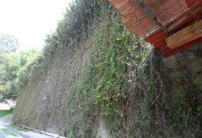 Foto de terreno habitacional en venta en supervía poniente 00, olivar de los padres, álvaro obregón, df / cdmx, 6377999 No. 01