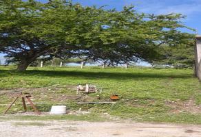Foto de terreno habitacional en venta en tabachines , 10 de mayo, tlaltizapán de zapata, morelos, 15641629 No. 01