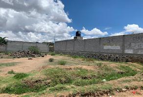 Foto de terreno habitacional en venta en tabasco , almoloya, cuautepec de hinojosa, hidalgo, 0 No. 01