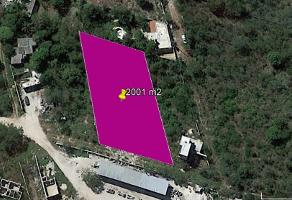 Foto de terreno habitacional en venta en tablaje 43214 , chichi suárez, mérida, yucatán, 0 No. 01