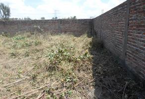 Foto de terreno habitacional en venta en  , tala centro, tala, jalisco, 2559775 No. 01