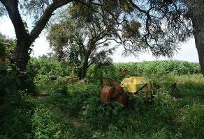 Foto de terreno habitacional en venta en  , tala centro, tala, jalisco, 2745644 No. 01