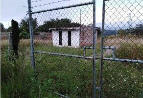 Foto de casa en venta en  , tala centro, tala, jalisco, 6288817 No. 01