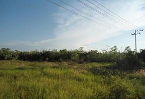 Foto de terreno comercial en venta en carretera guadalajara - tala - ameca , tala, tala, jalisco, 1586596 No. 01