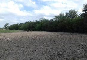 Foto de terreno habitacional en venta en  , tala, tala, jalisco, 6713117 No. 01