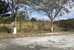 Foto de terreno habitacional en venta en tamoanchan 43, tamoanchan, jiutepec, morelos, 0 No. 01