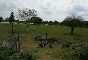 Foto de terreno habitacional en venta en  , tamos, pánuco, veracruz de ignacio de la llave, 11804030 No. 01
