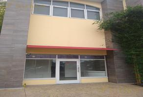 Foto de local en renta en  , tampico altamira sector 2, altamira, tamaulipas, 0 No. 01