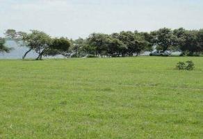 Foto de terreno comercial en venta en  , tampico, tampico, tamaulipas, 11790410 No. 01