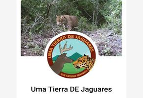 Foto de terreno comercial en venta en tancoyotl 1, bosques de la sierra, jalpan de serra, querétaro, 14978635 No. 01