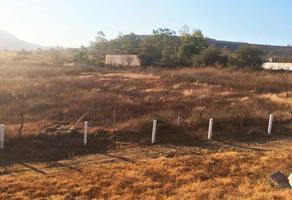 Foto de terreno habitacional en venta en  , tarimbaro, tarímbaro, michoacán de ocampo, 14340097 No. 01