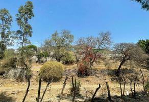Foto de terreno habitacional en venta en  , tarimbaro, tarímbaro, michoacán de ocampo, 0 No. 01