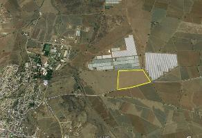 Foto de terreno habitacional en venta en tateposco , villa de cuerambaro, amatitán, jalisco, 6292836 No. 01