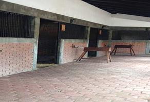 Foto de rancho en venta en  , taxhido, tepeji del río de ocampo, hidalgo, 14228821 No. 05