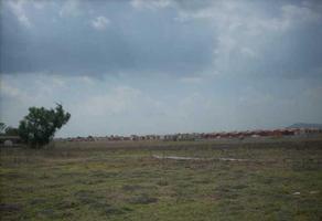Foto de terreno habitacional en venta en . , tecámac de felipe villanueva centro, tecámac, méxico, 17867449 No. 01