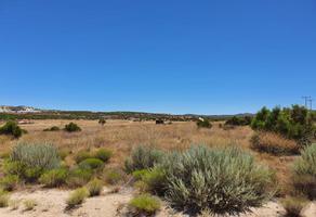 Foto de terreno habitacional en venta en tecate, rancho los manantiales. , tecate, tecate, baja california, 15937079 No. 01