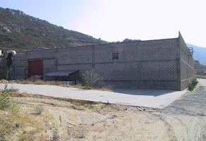 Foto de terreno habitacional en venta en  , tecate, tecate, baja california, 14676324 No. 01