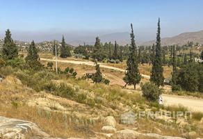 Foto de terreno habitacional en venta en  , tecate, tecate, baja california, 16069707 No. 01