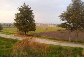 Foto de terreno habitacional en venta en tecaxic calle hidalgo , tecaxic, toluca, méxico, 0 No. 01