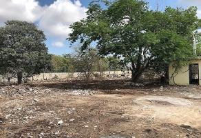 Foto de terreno habitacional en renta en  , paraíso, mérida, yucatán, 9344420 No. 01