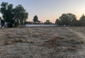 Foto de terreno habitacional en venta en tecolote , papalotla, papalotla, méxico, 0 No. 01