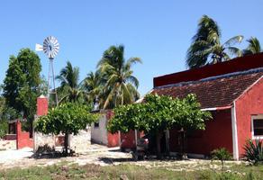 Foto de rancho en venta en  , temax, temax, yucatán, 10540386 No. 01