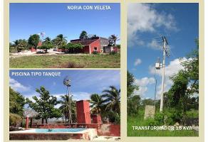 Foto de casa en venta en  , temax, temax, yucatán, 11735587 No. 01