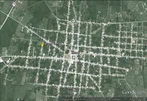 Foto de terreno habitacional en venta en  , temax, temax, yucatán, 11855799 No. 01