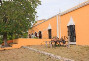 Foto de rancho en venta en  , temax, temax, yucatán, 0 No. 01