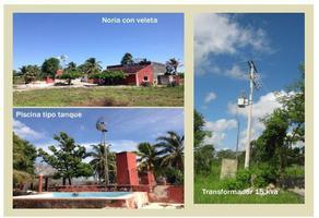 Foto de rancho en venta en  , temax, temax, yucatán, 14277270 No. 01