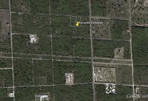 Foto de terreno comercial en venta en  , temozon norte, mérida, yucatán, 5943959 No. 02