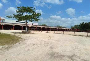 Foto de terreno habitacional en renta en  , temozon norte, mérida, yucatán, 7562252 No. 01