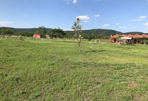 Foto de terreno habitacional en venta en  , tenango (santa ana), jantetelco, morelos, 0 No. 01