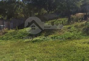 Foto de terreno habitacional en venta en  , tenencia de morelos, morelia, michoacán de ocampo, 13805705 No. 01